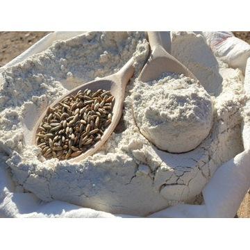 Mąka żytnia TYP 720 10kg chlebowa pytlowa z MŁYNA