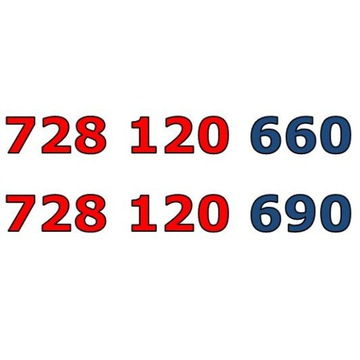 728 120 660 + 728 120 690 ZŁOTY NUMER STARTER PARA