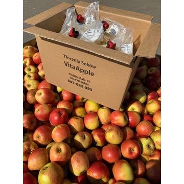 Sok jabłkowy 5l tłoczony na zimno- soki NFC, 100%