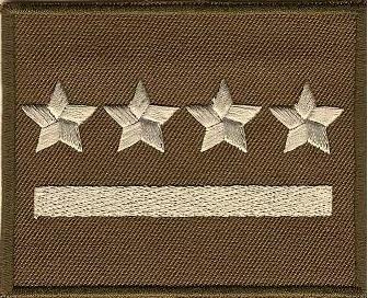 Пятьдесят девять Воинское звание DYSTYNKCJA на куртку ШУ ШУ !