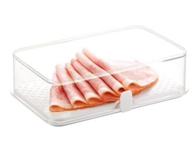 Nádoba na potraviny - TESCOMA - POJEMNIK DO LODÓWKI NA ŻYWNOŚĆ 22x14 cm