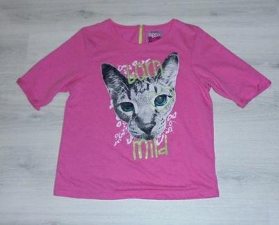 5 10 15 dresowa bluzka z kotem nowa 164