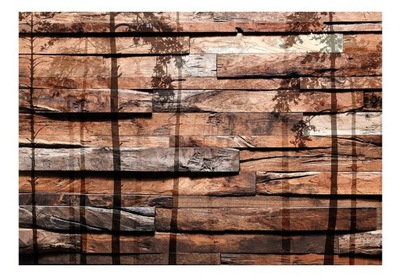 Foto Tapety, drevo, steny, v pozadí stromy 350x245 + LEPIDLO