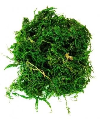 искусственный мох ясли декор Пасха трава 40gram