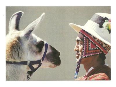 Открытка - Лицом к лицу с ламой / Перу ...