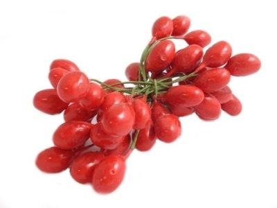 PT265 фрукты тычинки для ЦВЕТОВ проволока красное 11