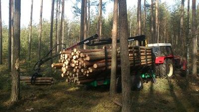 Прицеп лесная ??? заноса дерева MAAMUT M120S 12т