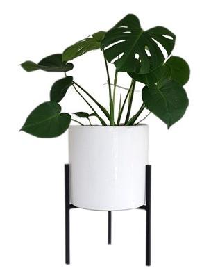КЛУМБА металлический Стенд цветы современный