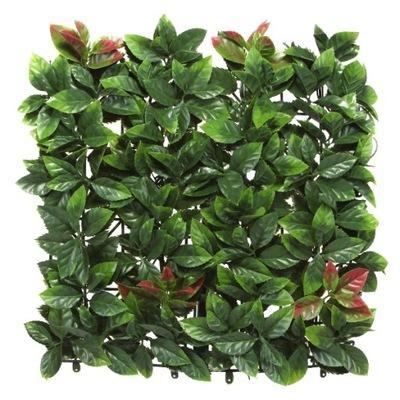 PHOTINIA коврик 50x50 см искусственная зеленый Стена