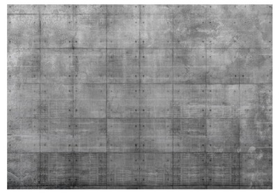 TAPETY NA KUCHYŇU - MODERNÁ JEDÁLEŇ 250x175