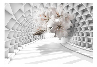 Настенные фрески 3D ОПТИЧЕСКАЯ Туннель цветы Лилии 350x245
