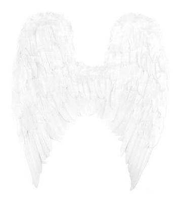 Veľkých anjel Krídla, Perie Šaty, Kostým