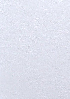 Papier wizytówkowy ozdobny 246g skóra biała 400A4