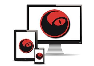 STRONA INTERNETOWA WWW SSL RWD POZYCJONOWANIE CMS
