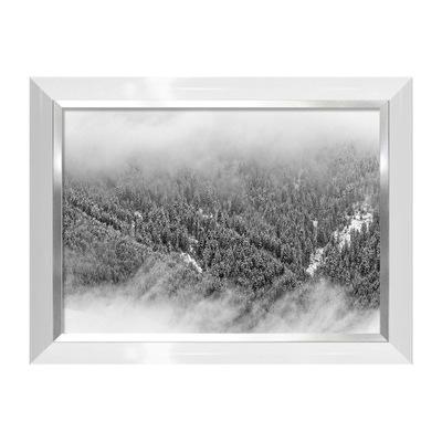 Świerkowy las we mgle obraz Mark Asthoff DonumArt