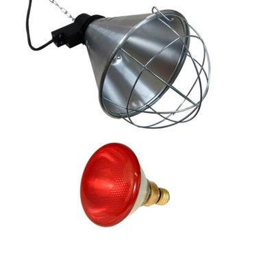 Лампа нагрева 175W лампа + Светильник комплект