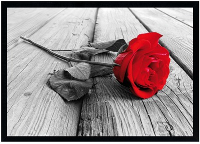 MODERNÝ vzhľad V RAMENE 70x100 cm ROSE RED