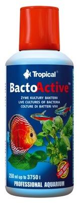 Tropical BACTO ACTIVE 250 мл БАКТЕРИИ BIOSTARTER