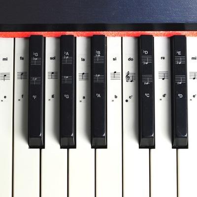 Naklejki nuty gama na klawisze keyboard pianino