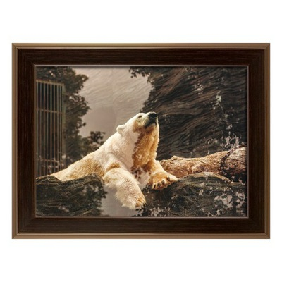 Картина в раме Белый МИШКА фотография медведь