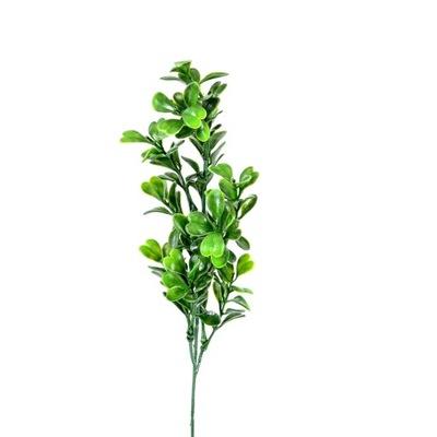 Голубика ветка, лист толстый 44 см зеленый