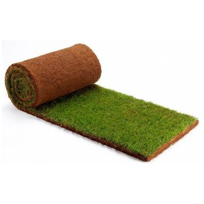Rolowany trávnik, trávne rolowana - PALETA 40 M2