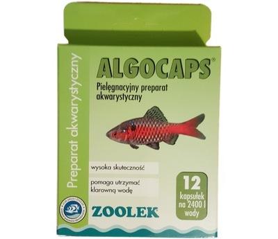 Algocaps Препарат на водоросли 12 капсул instagram