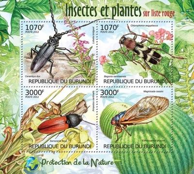 Owady chrząszcze żuki Burundi ark. ** #BUR12401a
