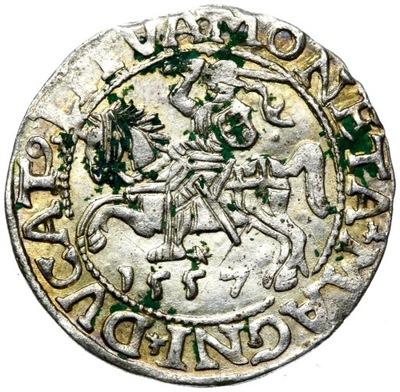 + Półgrosz Лит 1557 Сигизмунд II Август серебро
