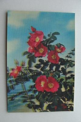 цветы старая ОТКРЫТКА ТРЕХМЕРНАЯ