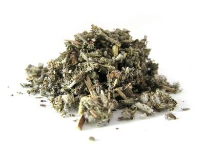 SZAŁWIA lekarska ziele szałwii 1 kg