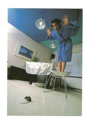 Открытка - женщина , крыса и большой крик ...