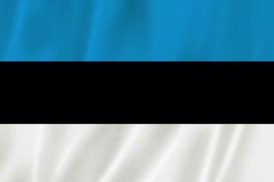 FLAGA - ESTONIA 90x65 cm