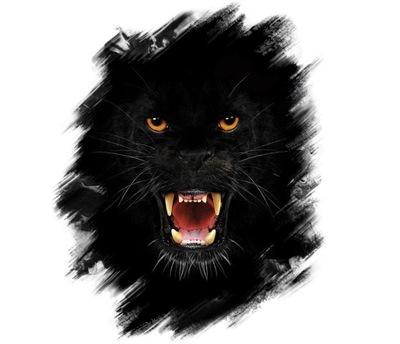 Naklejka Naklejki Czarna Puma Głowa Pumy Komplet 6689255132 Allegropl