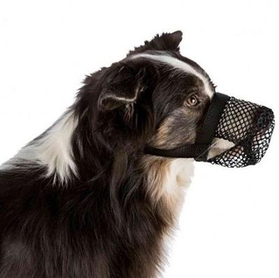 Намордник для собаки против zjadaniu мусора Трикси L
