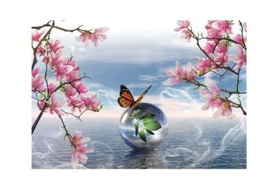 Foto Tapety kvety, motýľa, motýle, zvieratá 350x245