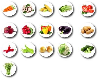 Магниты на холодильник Овощи - МАГНИТ Овощи 16 штук