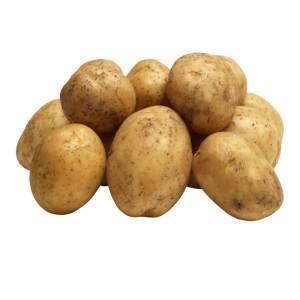 Картофель молодой  1кг