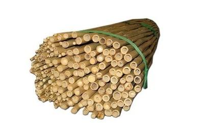 Tyczki bambusowe 150cm 100szt podpory roslin kije