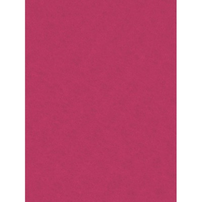 войлок декоративный , Декоративный 20 х 30 см темно-розовый