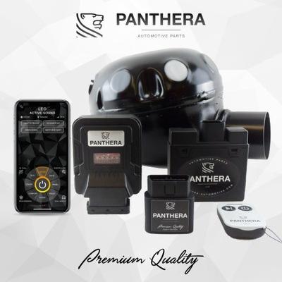 АКТИВНЫЙ ВЫХЛОПНАЯ PANTHERA LEO 2.0 (V8 AUDI SOUND)