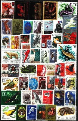 ZSRR. Zestaw ciekawych znaczków
