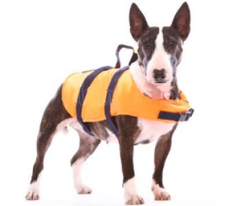 SPORTIS жилет Спасательный жилет для собаки -25 кг L