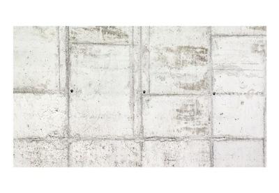 Nástennú maľbu XXL biele, sivé kamenné múry 500x280