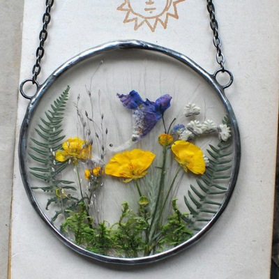 сушеные цветы , Декор террариум, Глаукомы , paprotki