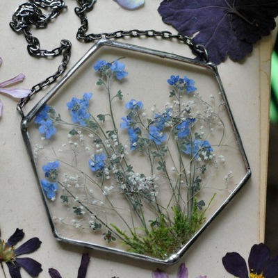 сушеные цветы , Декор , террариум, неимущими