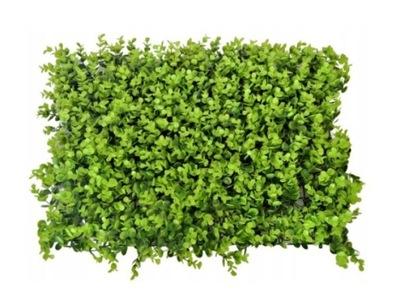 Sztuczna zielona ściana mata EUKALIPTUS 40x60