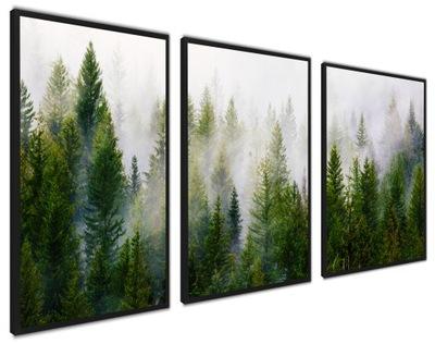 Плакаты в плечо, Современные изображения, БОЛЬШОЙ лес, туман