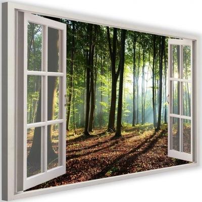 Maľovanie na plátno okno - hustý les 60x40