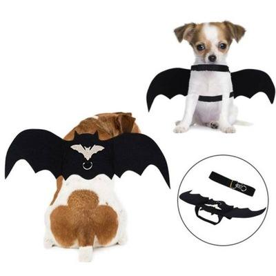 Kot pies ubrania Halloween cosplay